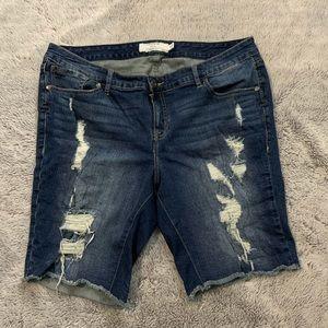 3 for $50 Torrid Denim Shorts